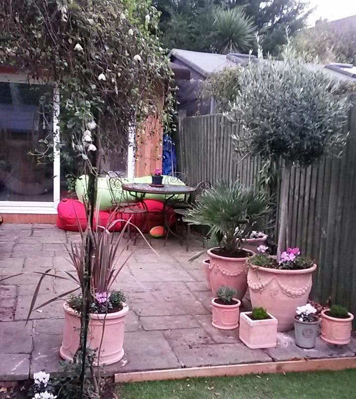 Sam's garden after 3