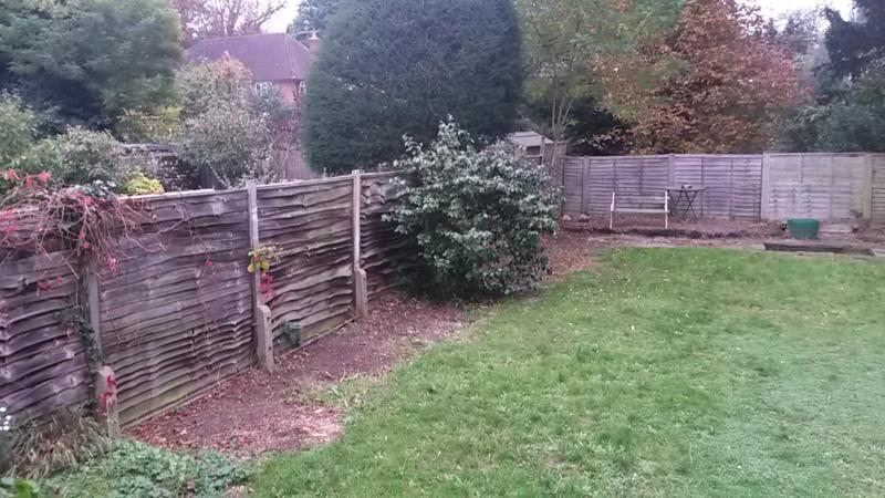 Kate's Garden before 1