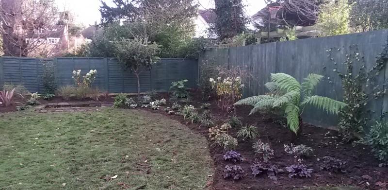 Kate's garden 3